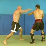 Blocks and Counters for Punches and Kicks