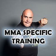 MMA Specific Training