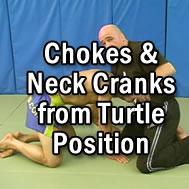 chokes-turtle