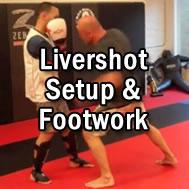 livershot-setup